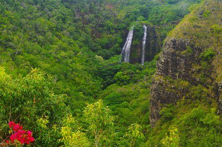 Beautiful Opaekaa Falls in a lush valley on the island of Kauai, Hawaii photo