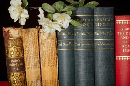 tomes: Three classic historical works with a sprig of flowers Stock Photo