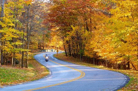 A motorcycle (with a bit of motion blur from his speed) rides through an autumn wonderland