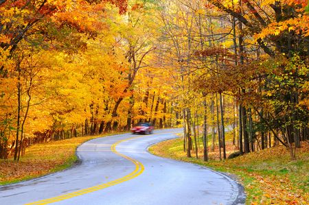 Une voiture sur arrondi automne route forestière, avec mouvement flou de sa vitesse. Banque d'images