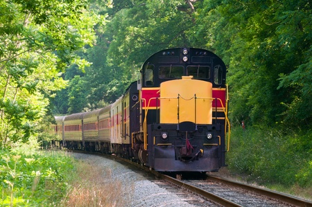 A scenic passenger train rounds a curve in a forested area
