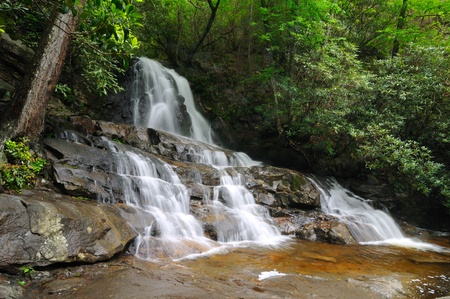 View of Laurel Falls in Great Smoky Mountains National Park photo