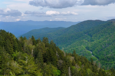 newfound gap: The Great Smoky Mountains and US 441 from Newfound Gap