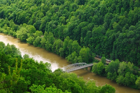 west virginia trees: View into the New River Gorge in West Virginia with freight train and small bridge