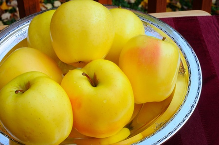 pictorial  representation: Apples of gold in settings of silver - pictorial representation of Proverbs 25:11 Stock Photo