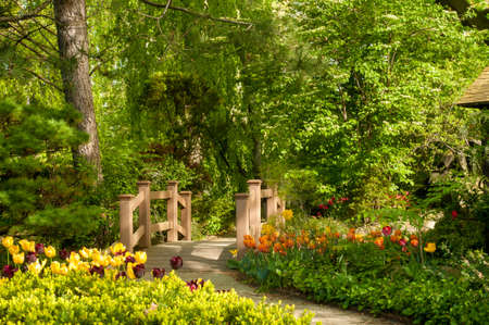 A picturesesque footbridge in a wooded garden with tulips photo
