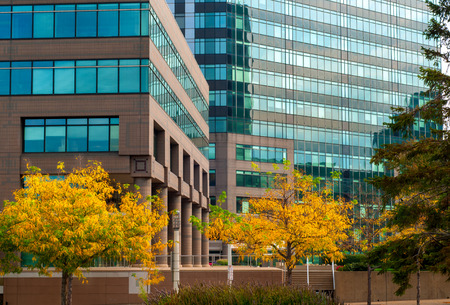 wall angle corner: Cleveland, OH - October 5  Contemporary glass facades provide an interesting backdrop to autumn foliage