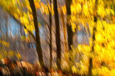 Camera-induced abstract painting effect of golden autumn foliage with browns and blues