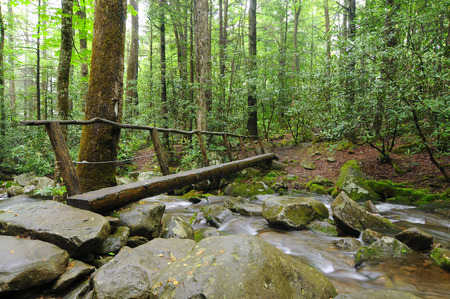 great smoky mountains national park: A narrow footbridge crosses a rushing stream in Great Smoky Mountains National Park Stock Photo