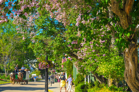 mackinac: MACKINAC ISLAND, MI - JUNE 26, 2014: A horse-drawn delivery wagon and pedestrian visitors amble along flowery Market Street on a sunny summer day. Editorial