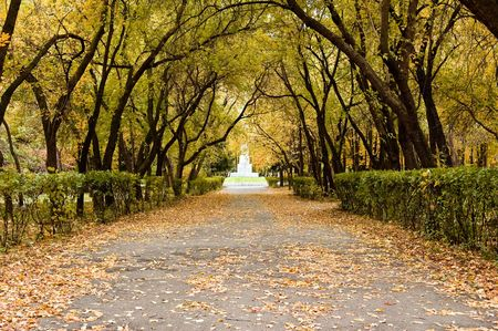 autumn alley Stock Photo - 1990080