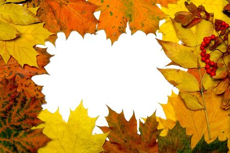 autumn fall leaf frame background Stock Photo - 2739733