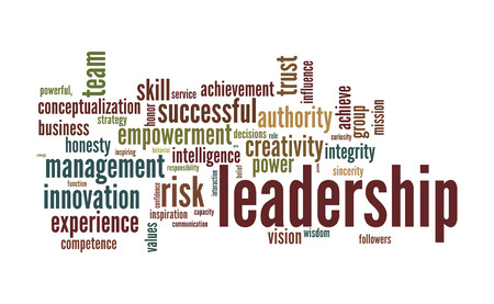 business roles: Leadership word cloud conceptual image