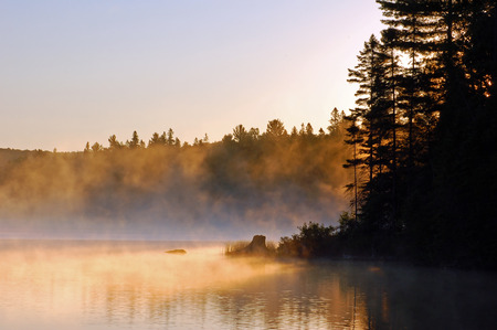 Sunrise and mist in beautiful lake in Algonquin Park Stock Photo - 1527903