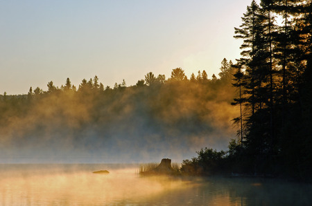 Sunrise and mist in beautiful lake in Algonquin Park Stock Photo - 1606938