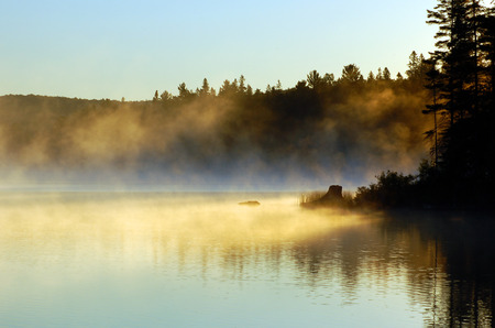Sunrise and mist in beautiful lake in Algonquin Park Stock Photo - 1606937