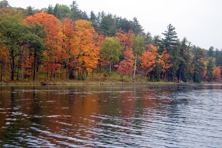 provincial: Reflection of colorful forest in lake surface in the overcast day Stock Photo