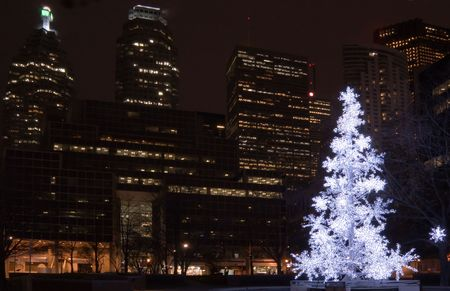 Christmas tree in a park on Toronto skyscraper background photo