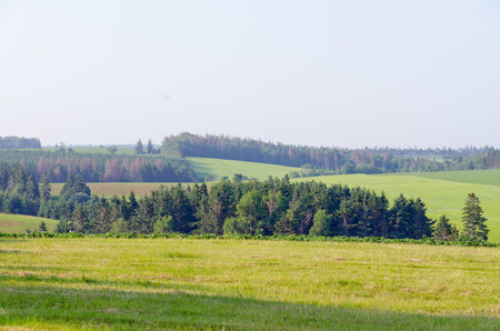 provincial: View of fields and forests of Prince Edward Island Stock Photo