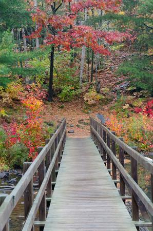 provincial forest parks: Wooden bridge above stream. Killarney Park, Canada