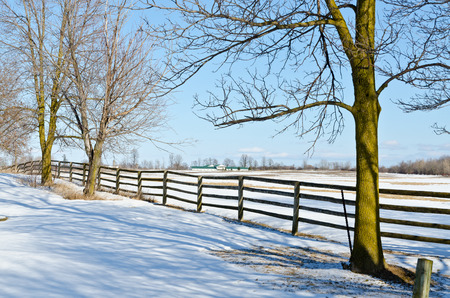 Farm fence and lines of shadows in winter time photo