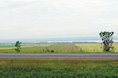 Farm field and green grass under blue sky photo