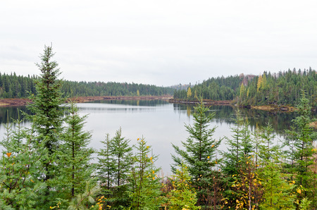 spaciousness: Forest lake in fall time, Ontario, Canada