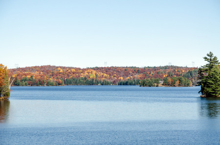 provincial forest parks: Lake in Muskoka during the fall season