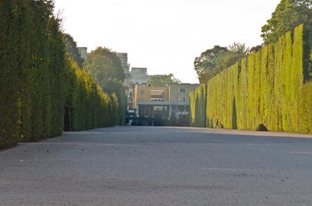 schloss schonbrunn: Crown prince privy garden