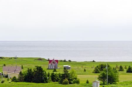 newfoundland: Newfoundland coast in summer time