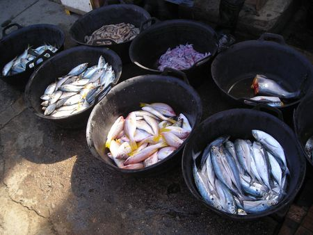 Fish for sale at a local market in Bintan, Indonesia