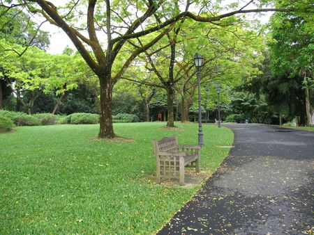 Lone bench in the park in Singapore Botanical Gardens Stock Photo
