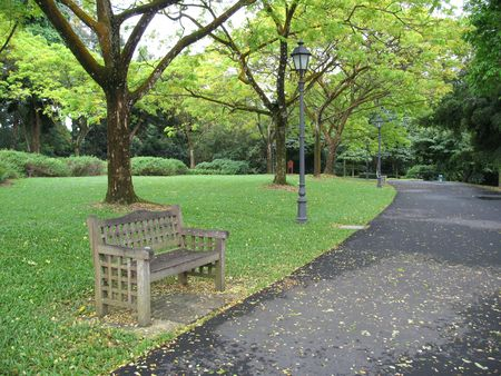 Lone bench in a park in Singapore Botanical Gardens
