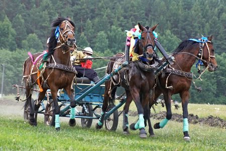 horse harness: Horse race. Rounding the Turn. Three horses  in harness