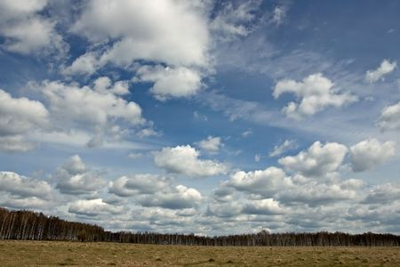 feld: Spring landscape with birch forest, feld and  clouds. Horizontal view.