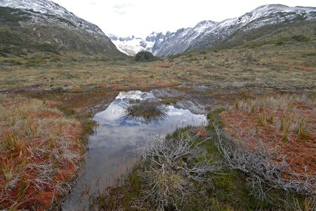 Landscape of Tierra Del Fuego near Ushuaia. Argentina. Horizontal view photo