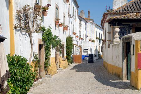ufortyfikować: Widok na ścianach średniowieczne miasto Obidos w zachodniej PortugalInteresting punktu widzenia w Portugalii.