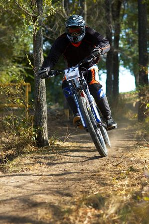 Downhill in forest Stock Photo - 691566
