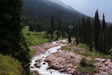Mountain river in Tian-Shan mountains, Kazakhstan Stock Photo - 13376506