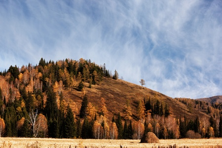 Autumn landscape in mountains after rain Stock Photo - 14448990