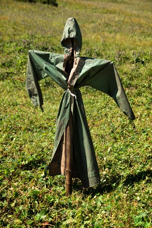 scarecrow: Simple scarecrow in summer mountains