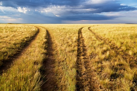 diverging: Two diverging rural road in the steppes of Kazakhstan