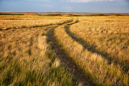 kazakhstan: Two converging rural roads in the steppes of Kazakhstan