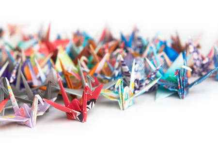A group of colourful origami birds on a white background
