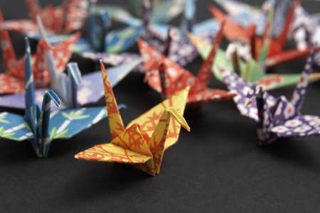 A group of colourful origami cranes on a black background