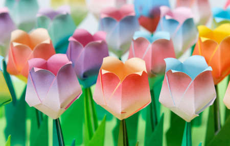 asian tulips: Colourful paper tulip field. Shallow depth of field. Focus on the front row. Stock Photo