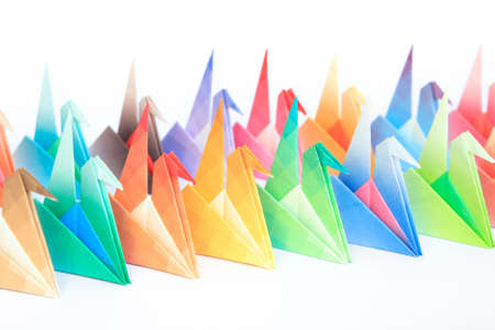 2 rows of colourful origami birds facing the same direction, on a white background. Shallow depth of field. Focus on the yellow and green birds in the middle.  Stock Photo