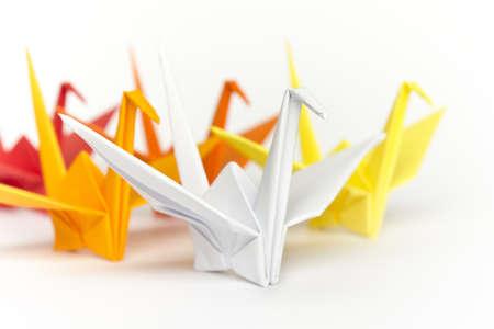 follow the leader: Een groep van kleurrijke papier vogels, ondiepe scherptediepte  Stockfoto