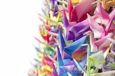 bandada de p�jaros: Coloridos p�jaros de papel de suspensi�n mediante l�neas de pesca. Profundidad superficial de campo.