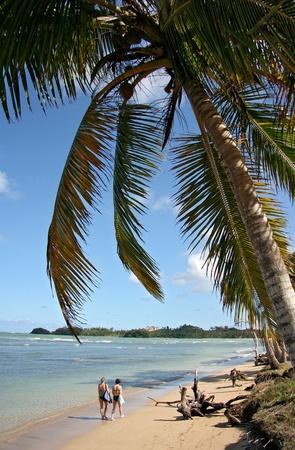 dominican republic: Tourists Couple Walking on The Beach - Playa Bonita, Dominican Republic